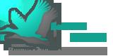 Википедия Страхования - Медиа-партнерс Страхового Бизнес Форума в Сочи